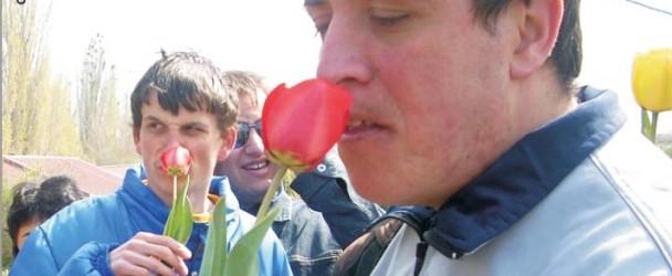 06.2008 - Glasilo Poraka